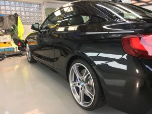 paint protection mdetail